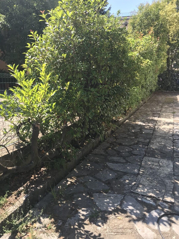 Perdita occulta in centro Lucca